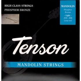 Tenson Mandolin Strings